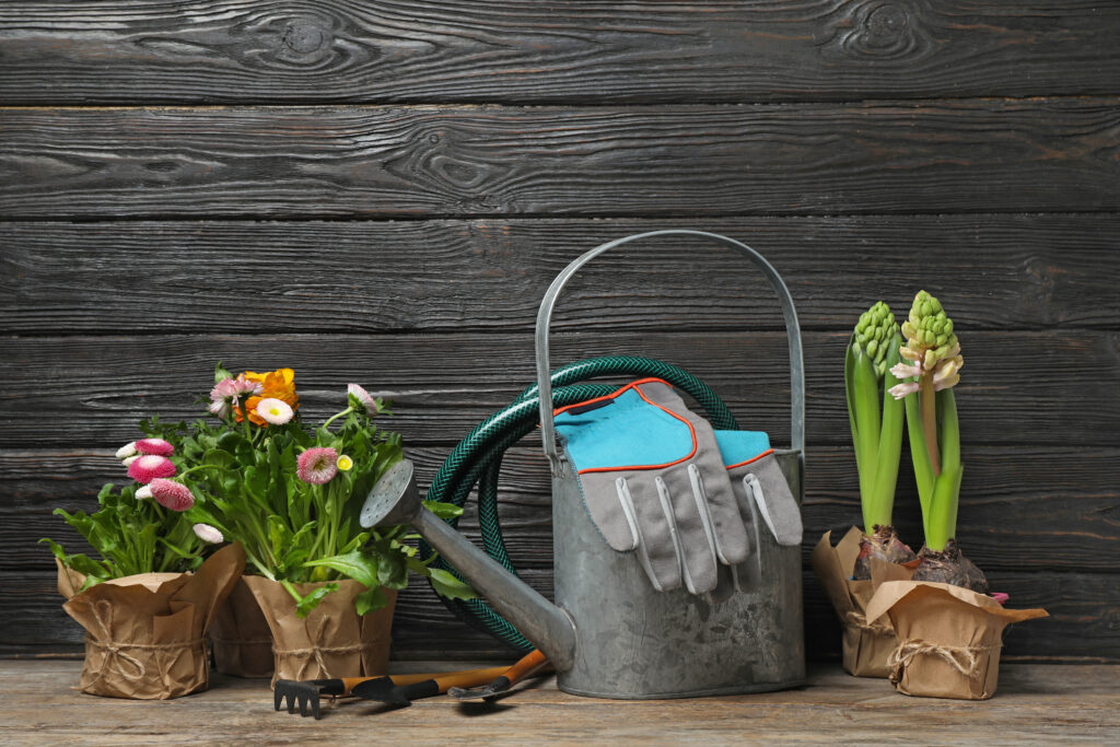 Composition with plants and gardening tools on table against wooden background
