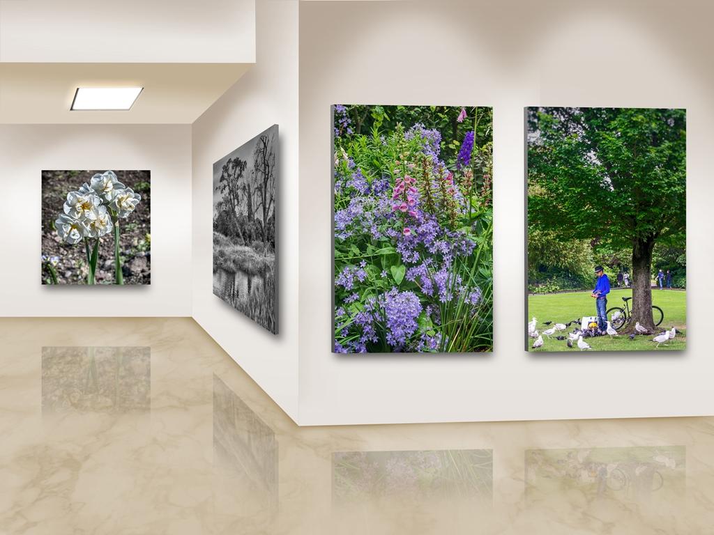 Photo Frames On Art Wall 3 sm